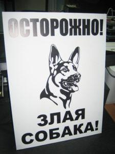 табличка злая собака купить